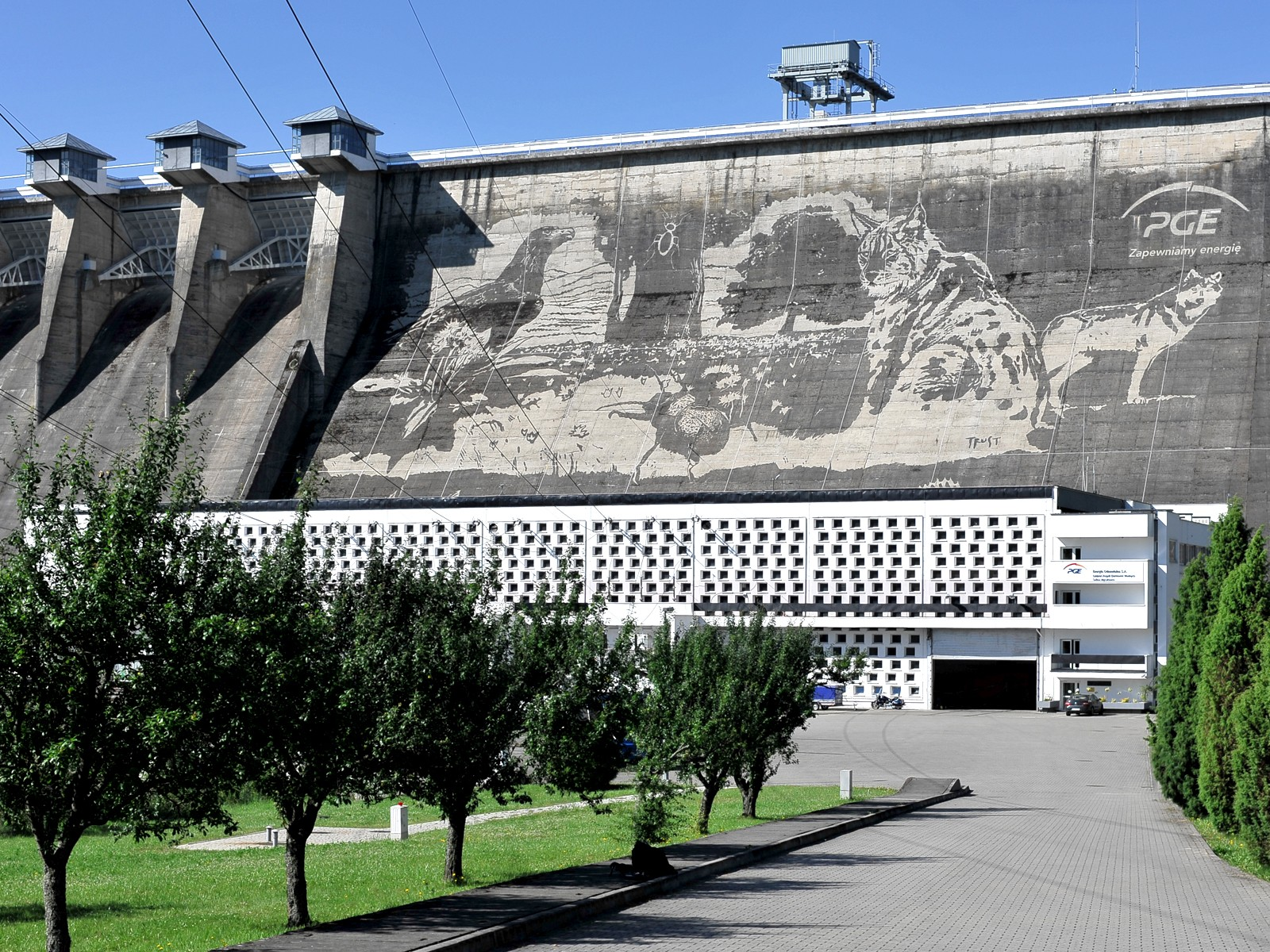 Ecological mural in Solina for PGE | Ecological mural - Clean graffiti | Portfolio