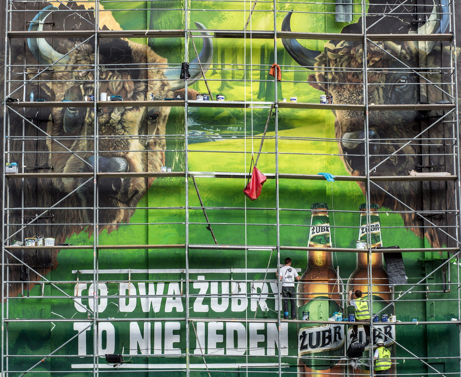 Advertising mural Every two Zubr are better than one in Warsaw Bracka street Department Store Bracia Jablkowscy | Every two Zubr are better than one | Portfolio