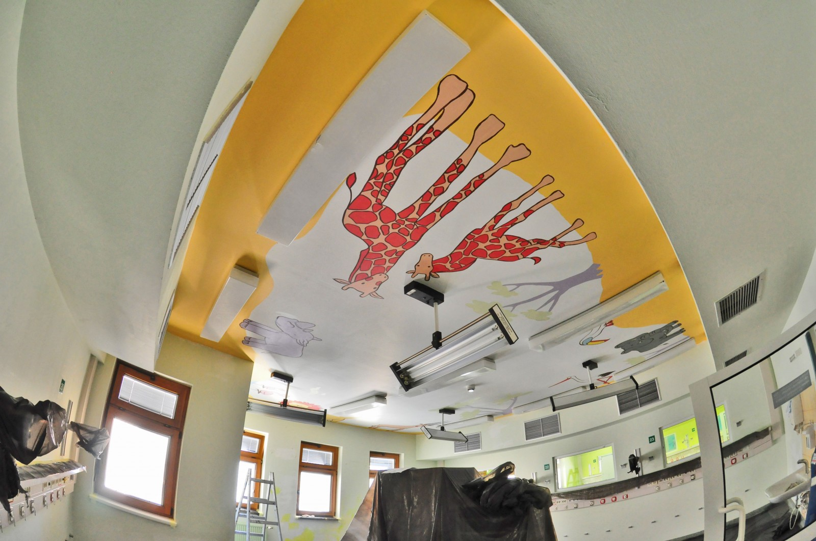 Dulux Ceiling Operation - The Children's Memorial Health Institute painting | Ceiling Operation - The Children's Memorial Health Institute | CSR | About us