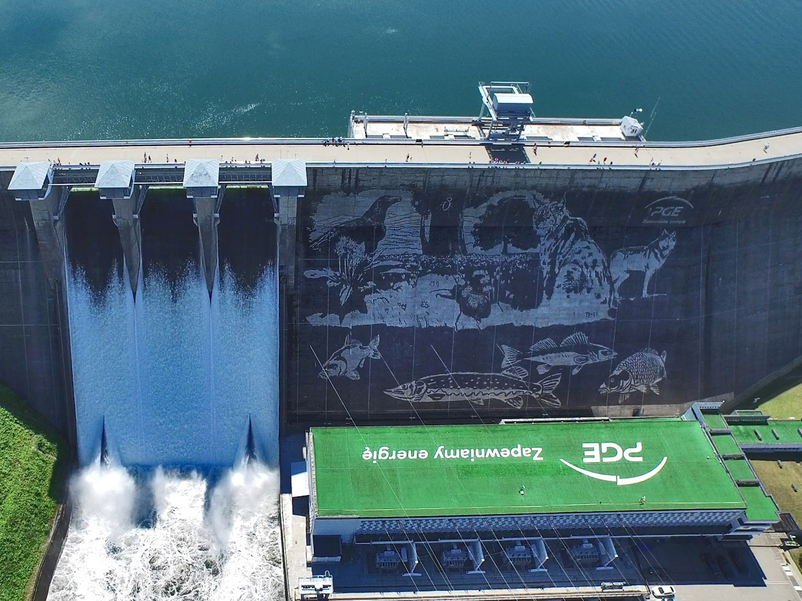 Hydroelectric power plant in Solina mural Clean Graffiti for PGE | Ecological mural - Clean graffiti | Portfolio