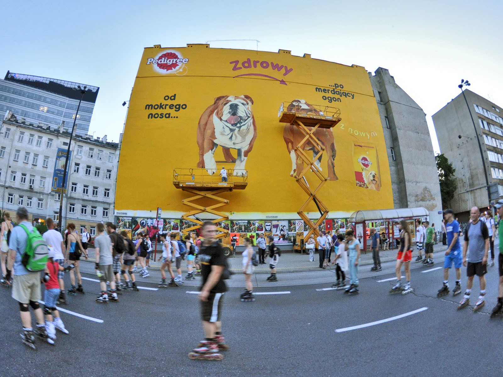 Advertising mural Pedigree - Warsaw Polna 40 street | From wet nose... to wagging tail | Portfolio