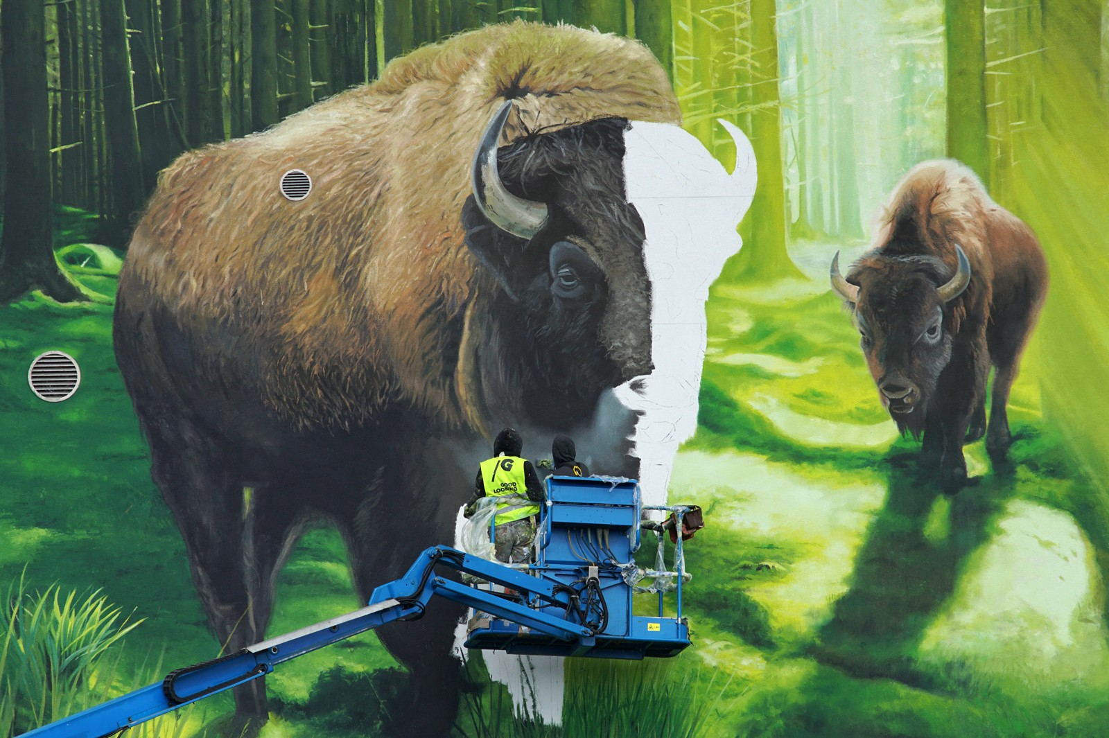 Hand painted European bison at Polmos factory in Bialystok on Elewatorska 20 street symbolizing Zubrowka brand vodka | Zubrowka | Portfolio