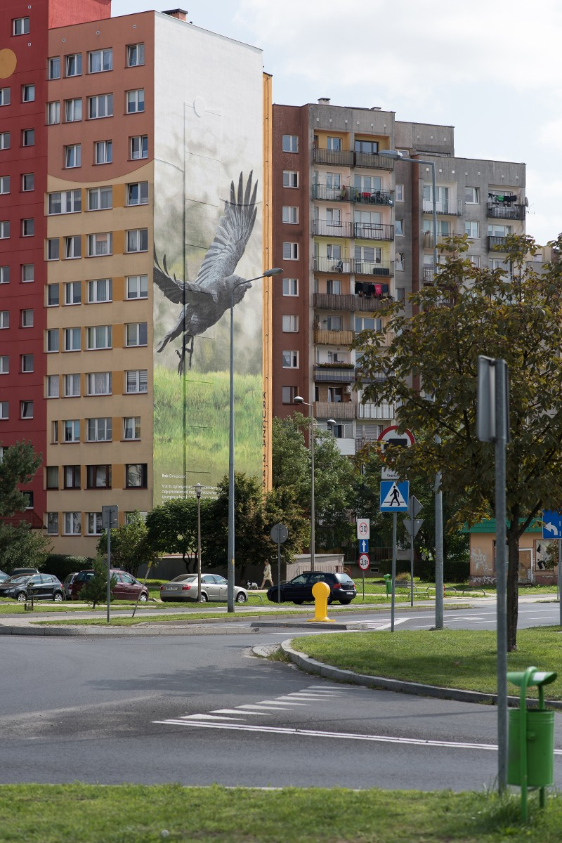 Photorealistic mural on the Krucza street in Lubin | Information and educational campaign in Lubin | Portfolio